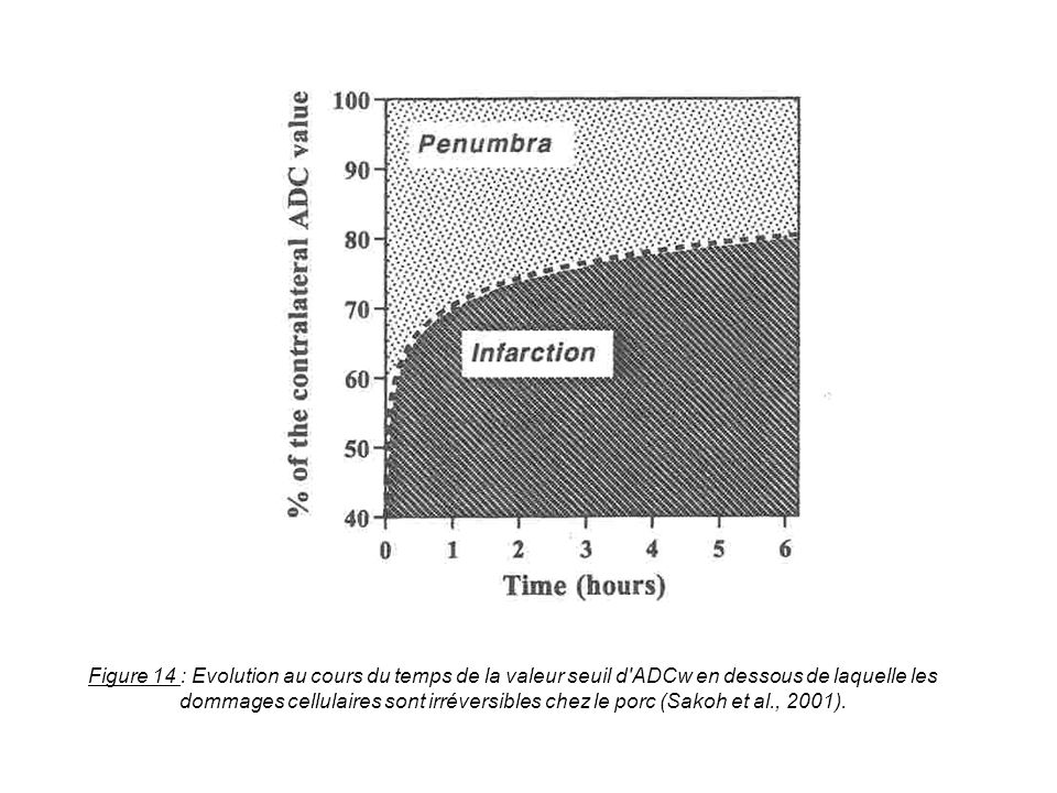 Figure 14 : Evolution au cours du temps de la valeur seuil d ADCw en dessous de laquelle les dommages cellulaires sont irréversibles chez le porc (Sakoh et al., 2001).