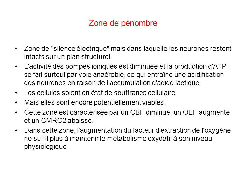 Zone de pénombre Zone de silence électrique mais dans laquelle les neurones restent intacts sur un plan structurel.