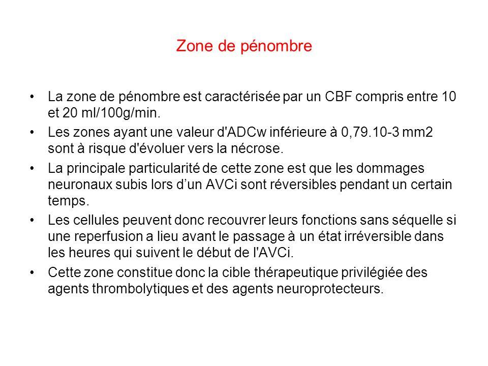 Zone de pénombre La zone de pénombre est caractérisée par un CBF compris entre 10 et 20 ml/100g/min.