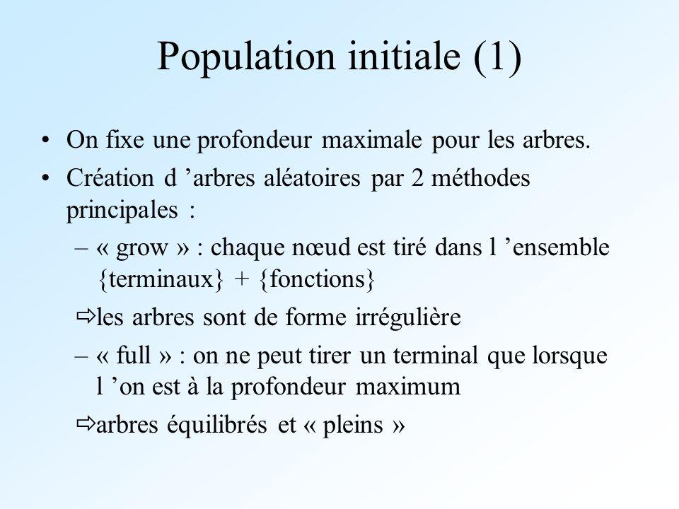 Population initiale (1)