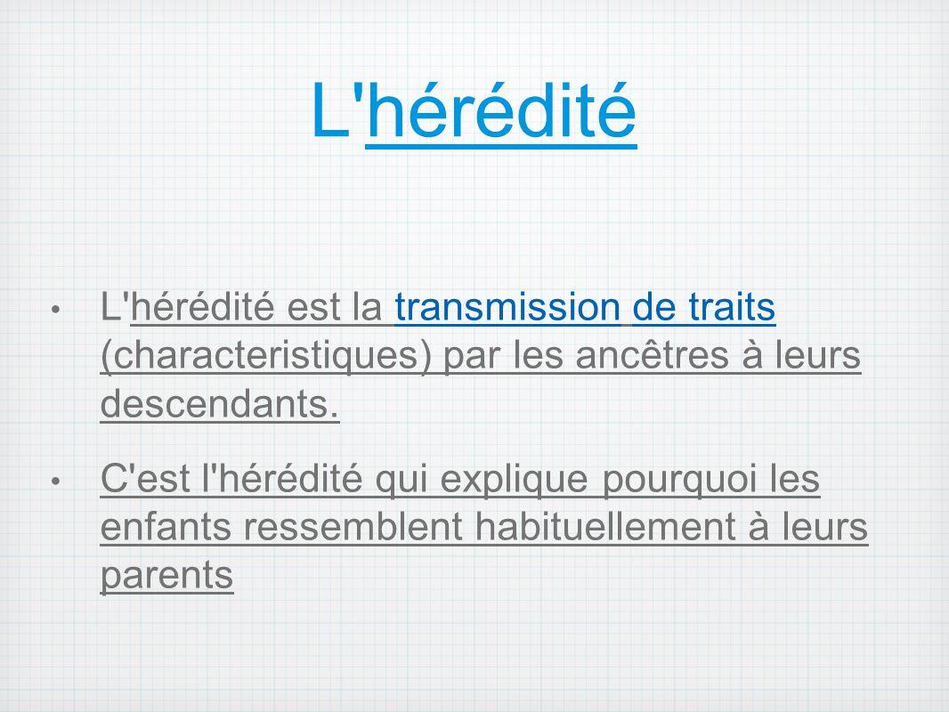 L hérédité L hérédité est la transmission de traits (characteristiques) par les ancêtres à leurs descendants.