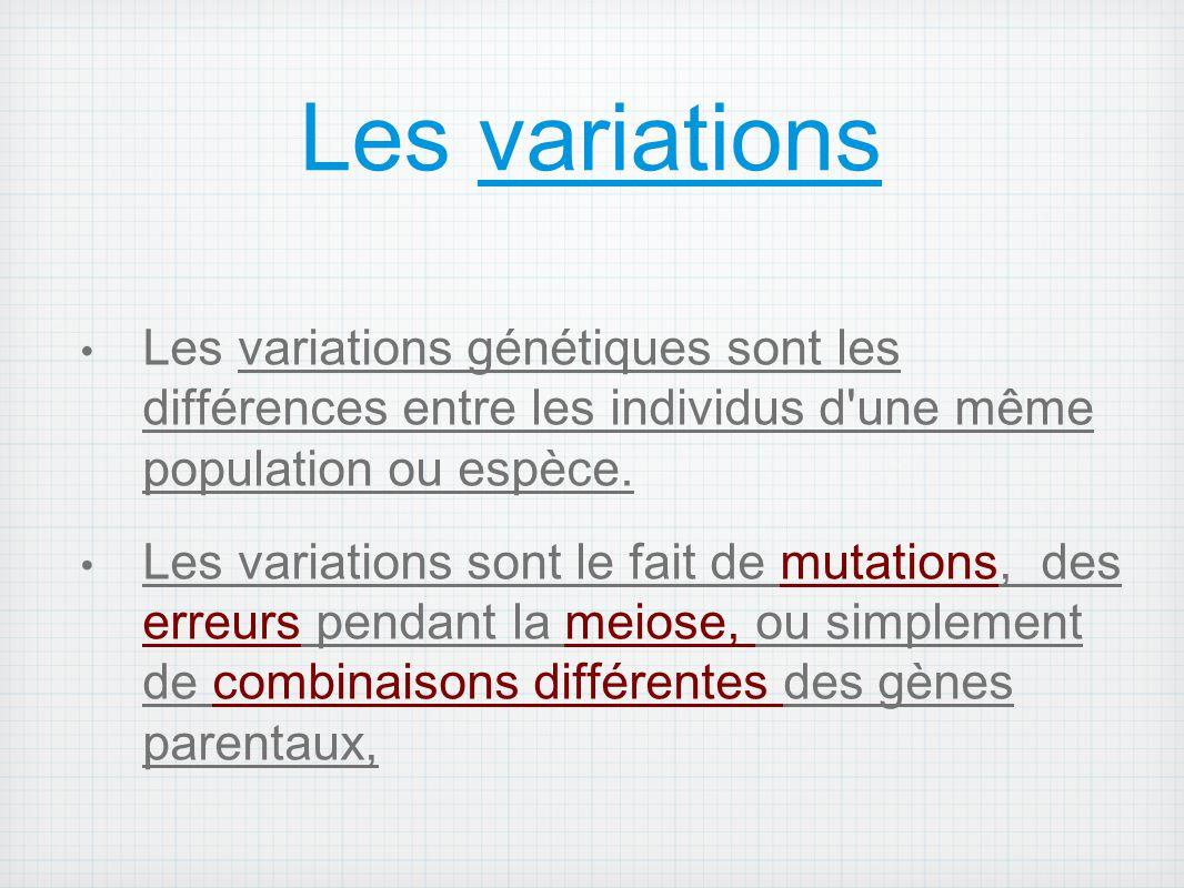 Les variations Les variations génétiques sont les différences entre les individus d une même population ou espèce.