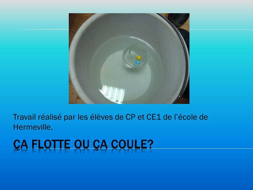 Travail réalisé par les élèves de CP et CE1 de l'école de Hermeville.