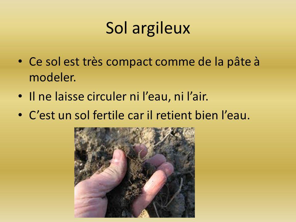 Sol argileux Ce sol est très compact comme de la pâte à modeler.