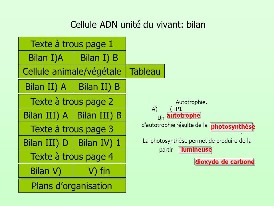 Cellule ADN unité du vivant: bilan