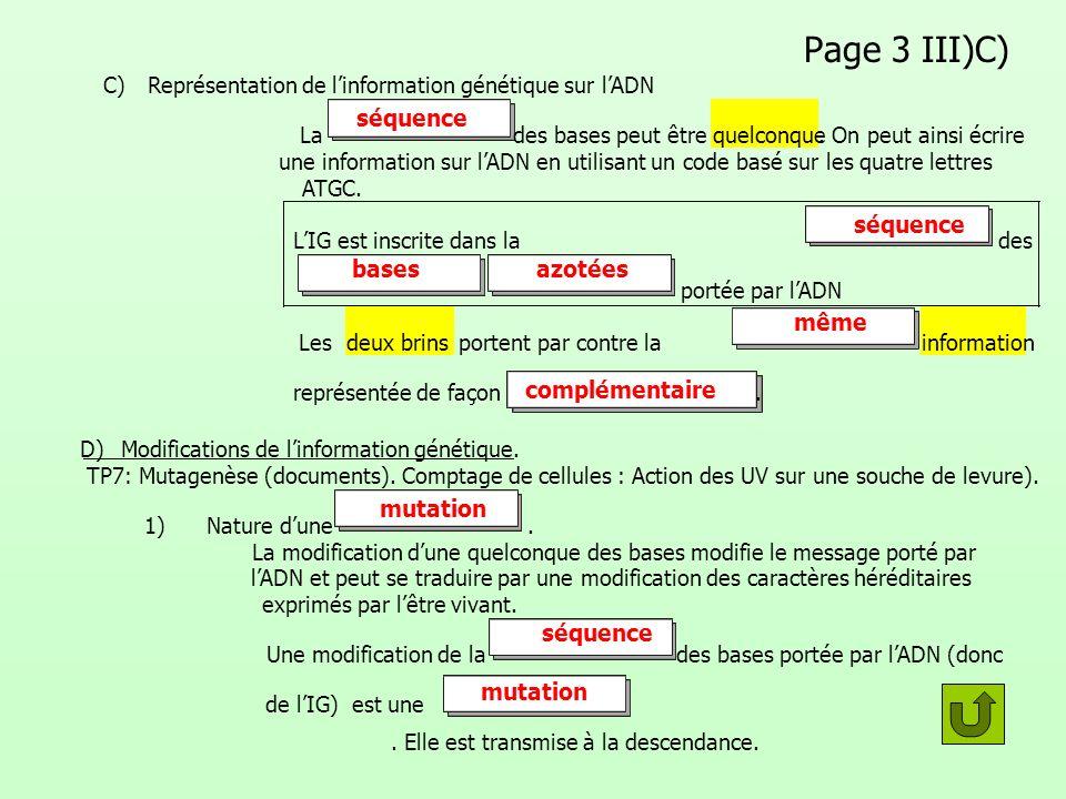 Page 3 III)C) séquence séquence bases azotées même complémentaire