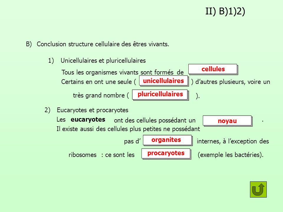 II) B)1)2) B) Conclusion structure cellulaire des êtres vivants. 1)