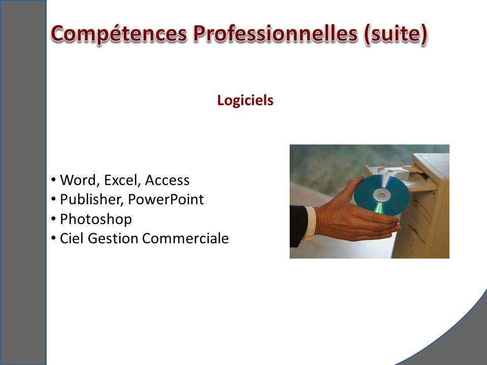 Compétences Professionnelles (suite)