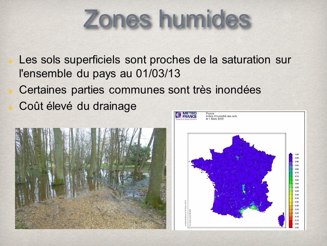 Zones humides Les sols superficiels sont proches de la saturation sur l ensemble du pays au 01/03/13.