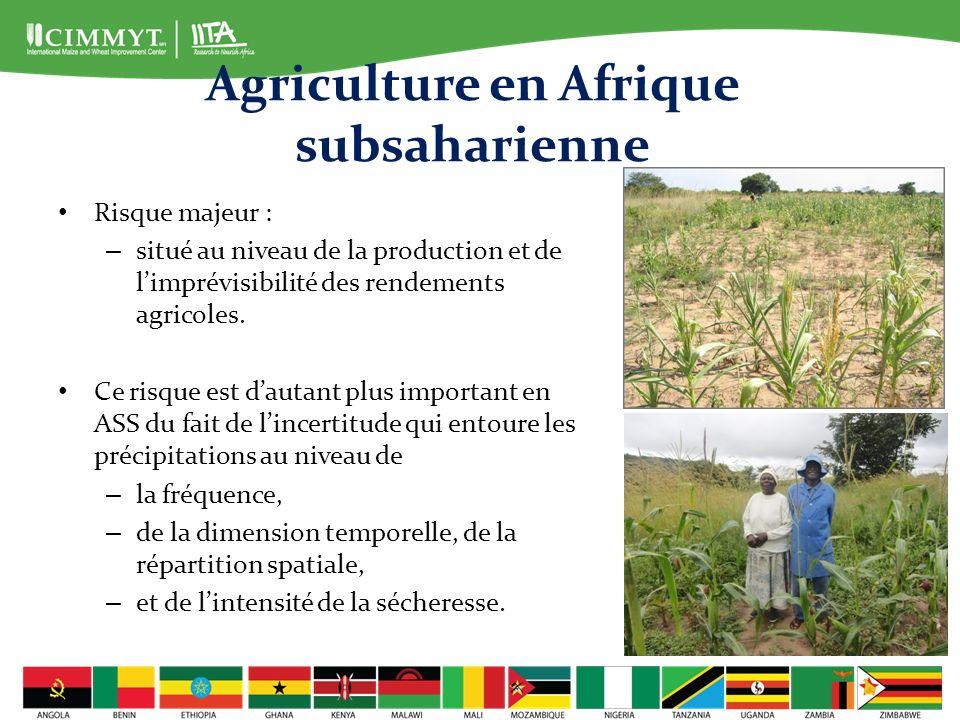 Agriculture en Afrique subsaharienne