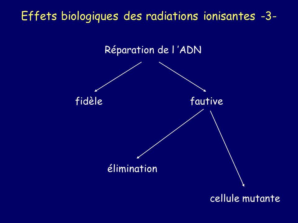 Effets biologiques des radiations ionisantes -3-