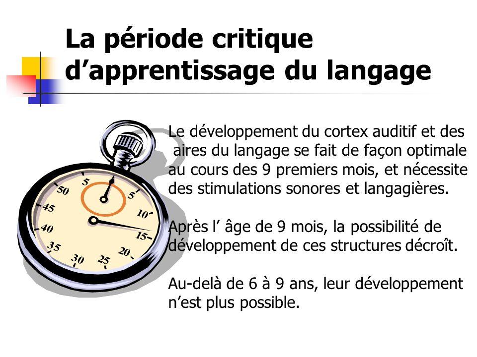 La période critique d'apprentissage du langage