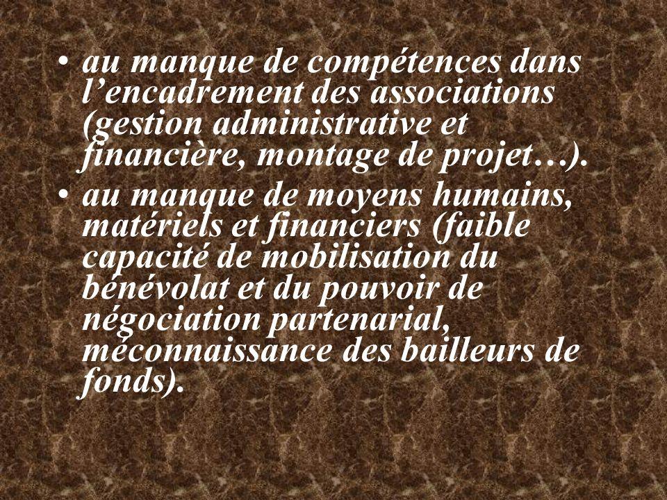 au manque de compétences dans l'encadrement des associations (gestion administrative et financière, montage de projet…).
