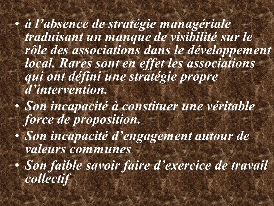 à l'absence de stratégie managériale traduisant un manque de visibilité sur le rôle des associations dans le développement local. Rares sont en effet les associations qui ont défini une stratégie propre d'intervention.