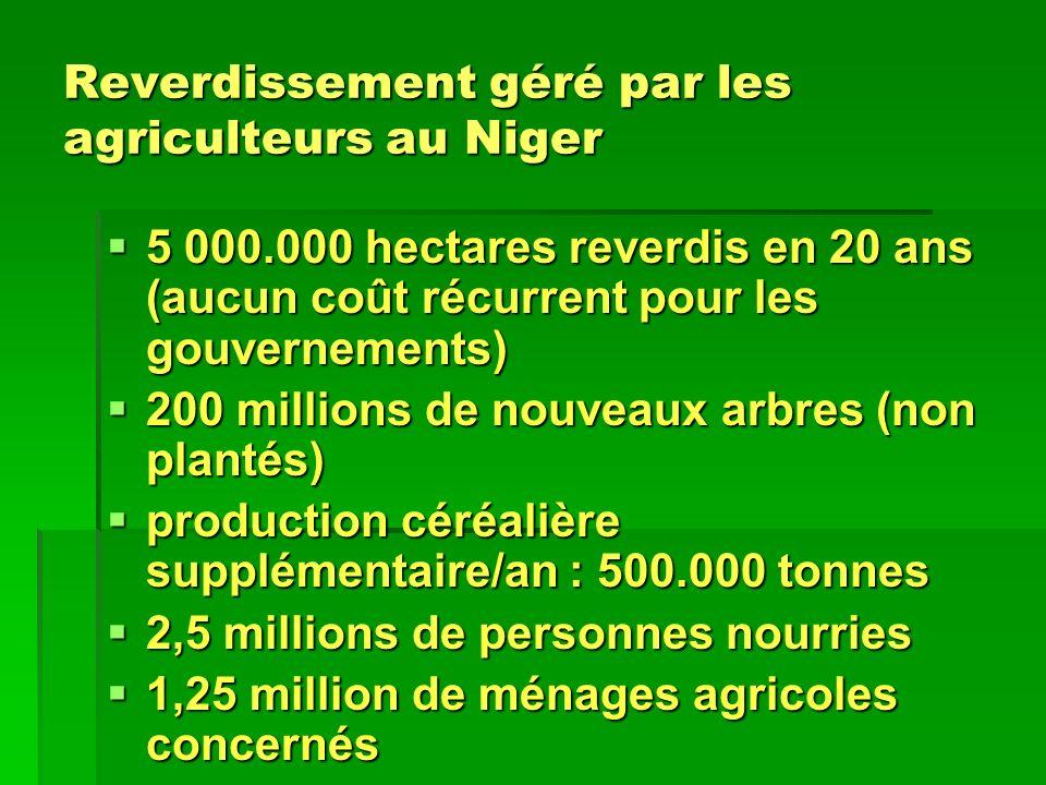 Reverdissement géré par les agriculteurs au Niger