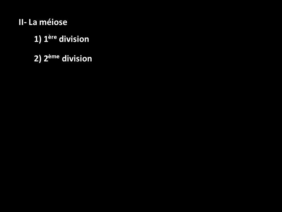 II- La méiose 1) 1ère division 2) 2ème division