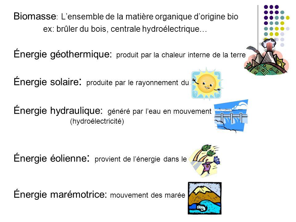Biomasse: L'ensemble de la matière organique d'origine bio