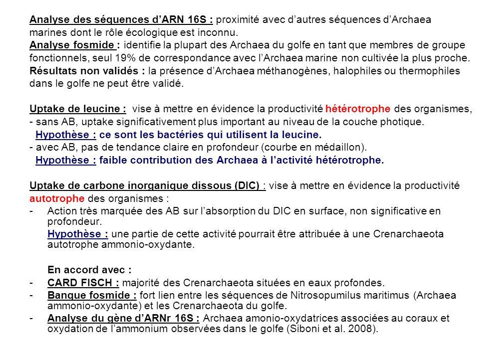 Analyse des séquences d'ARN 16S : proximité avec d'autres séquences d'Archaea