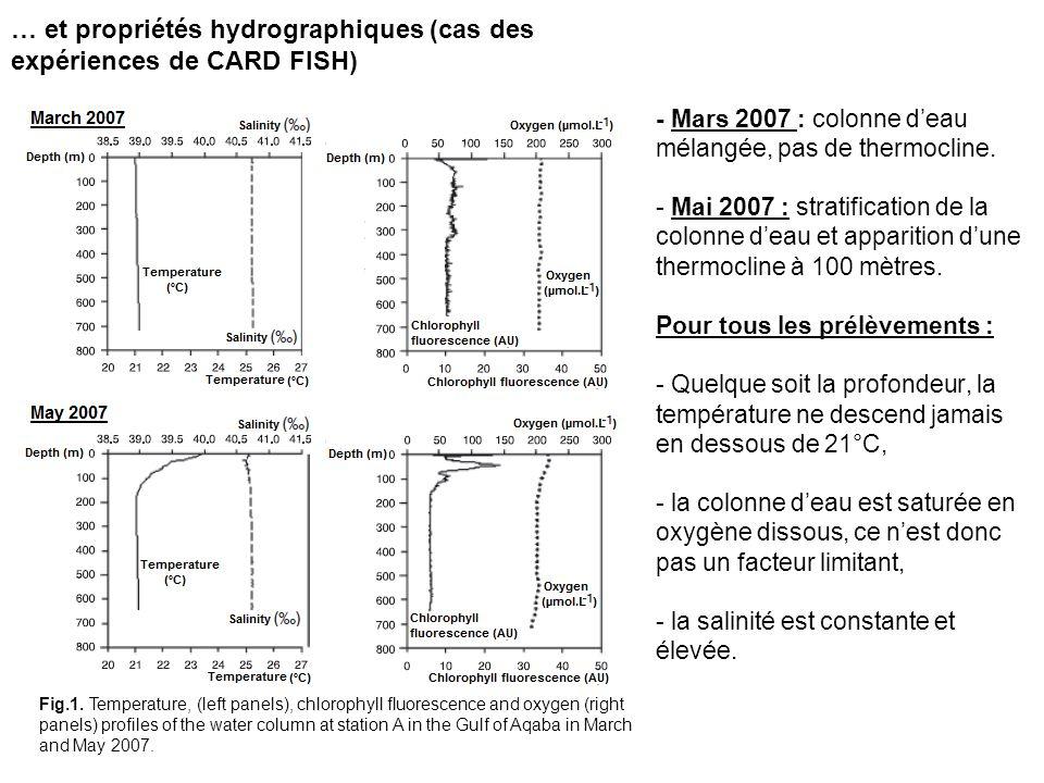 … et propriétés hydrographiques (cas des expériences de CARD FISH)