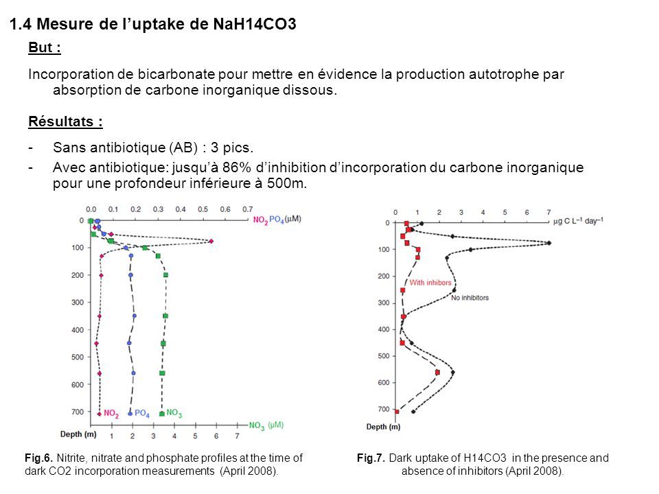 1.4 Mesure de l'uptake de NaH14CO3