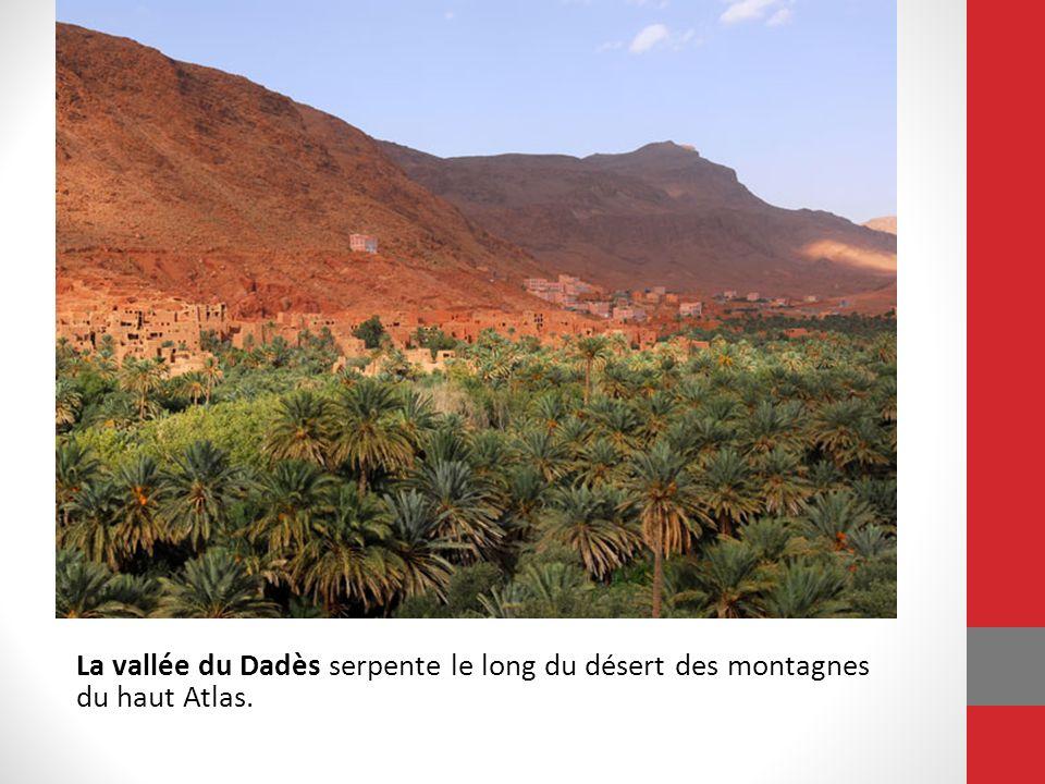 La vallée du Dadès serpente le long du désert des montagnes du haut Atlas. Les rivières de la vallée fournissent l eau pour une chaîne d oasis, où les palmiers-dattiers et les figuiers poussent en abondance.