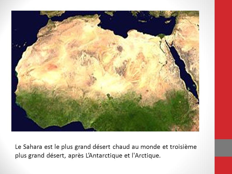 Le Sahara est le plus grand désert chaud au monde et troisième plus grand désert, après L'Antarctique et l Arctique.