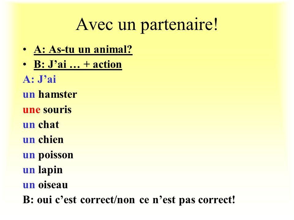 Avec un partenaire! A: As-tu un animal B: J'ai … + action A: J'ai