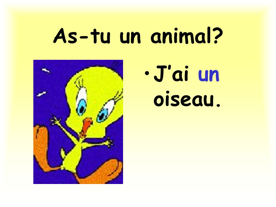 As-tu un animal J'ai un oiseau.