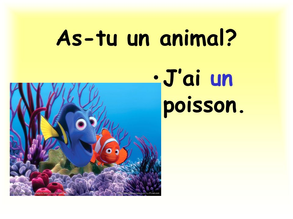 As-tu un animal J'ai un poisson.