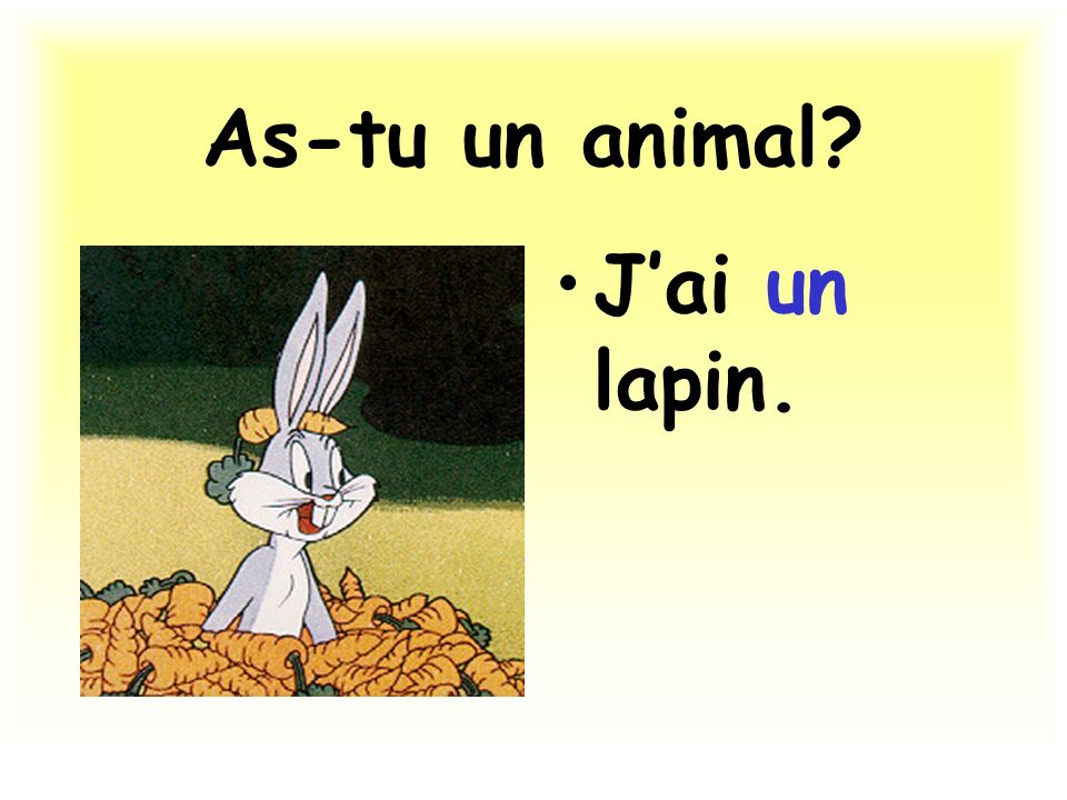 As-tu un animal J'ai un lapin.