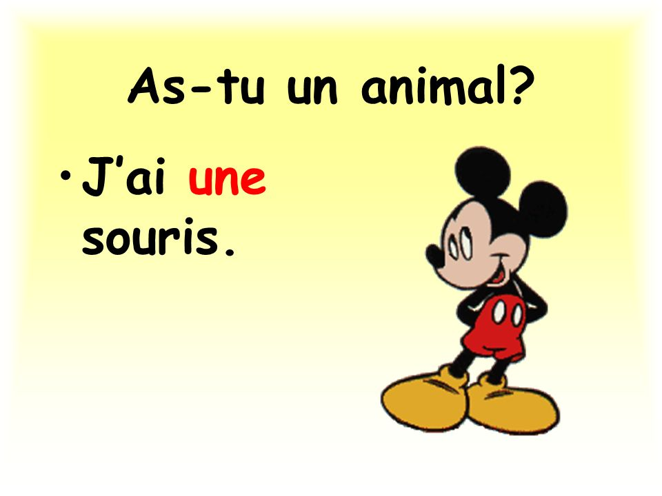 As-tu un animal J'ai une souris.