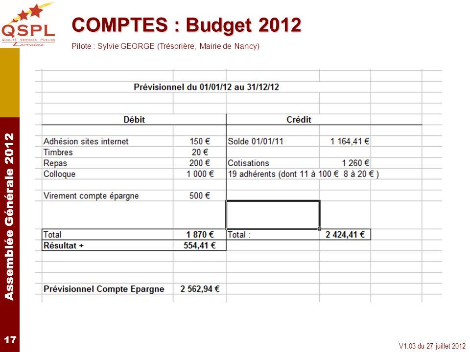 COMPTES : Budget 2012Pilote : Sylvie GEORGE (Trésorière, Mairie de Nancy) 17.