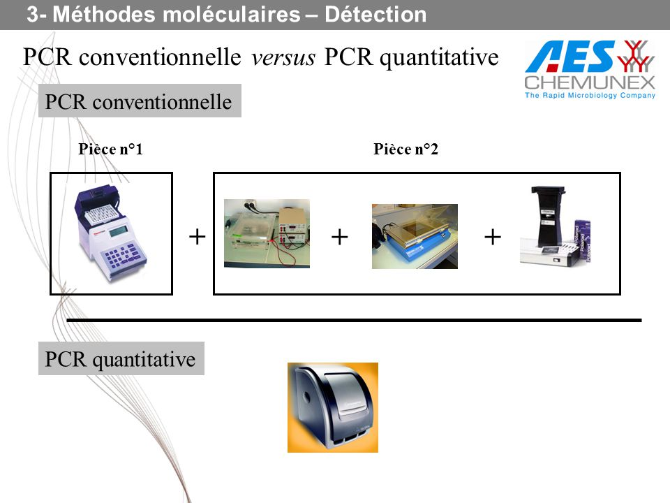 + + + PCR conventionnelle versus PCR quantitative