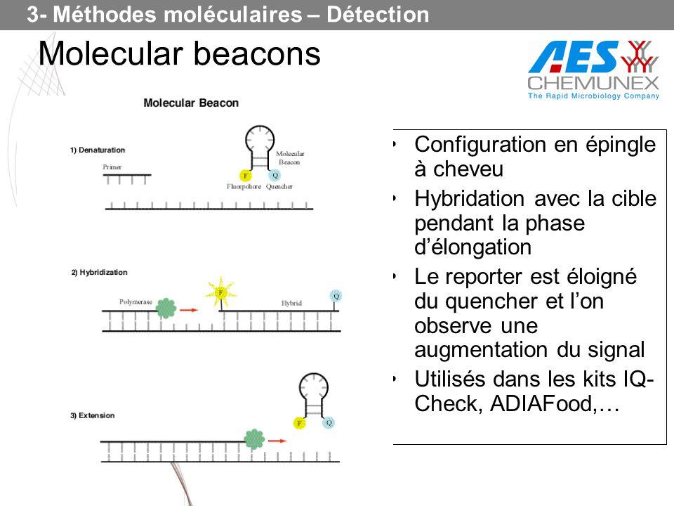 Molecular beacons 3- Méthodes moléculaires – Détection