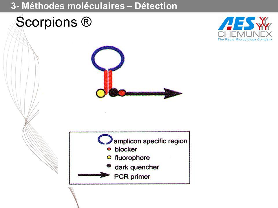 3- Méthodes moléculaires – Détection
