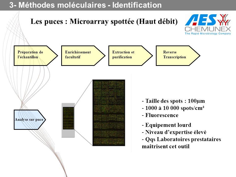 Les puces : Microarray spottée (Haut débit)