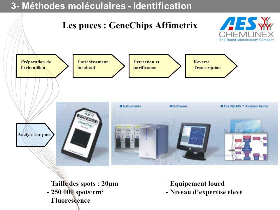 Les puces : GeneChips Affimetrix