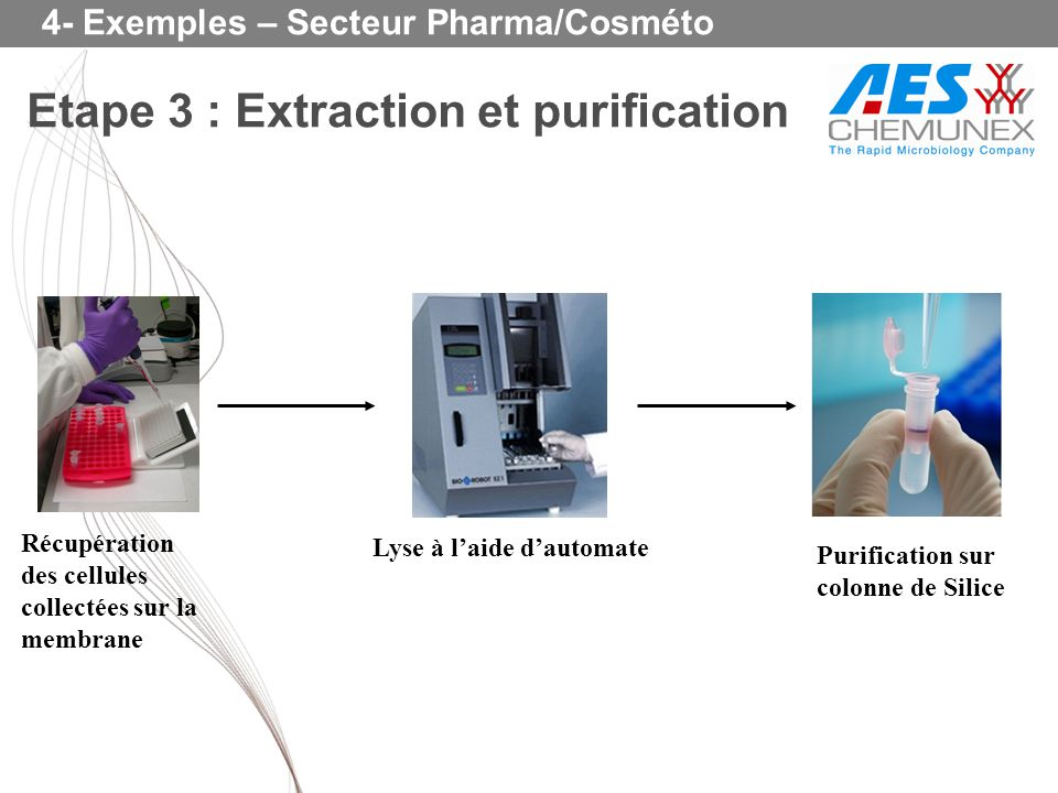 Etape 3 : Extraction et purification