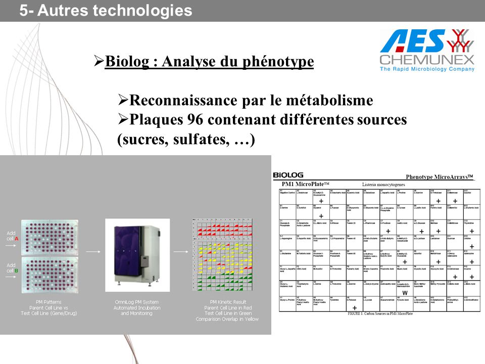 5- Autres technologies Biolog : Analyse du phénotype. Reconnaissance par le métabolisme.