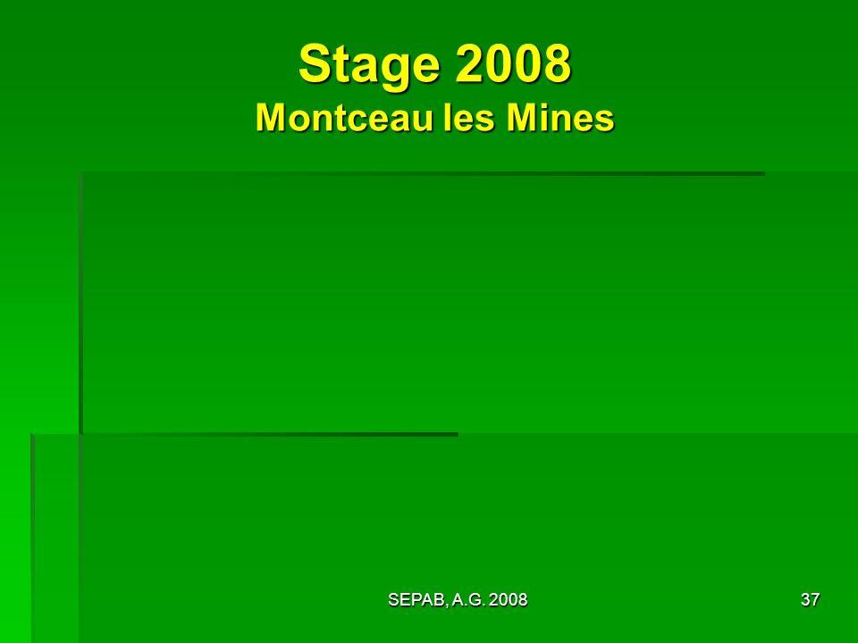 Stage 2008 Montceau les Mines