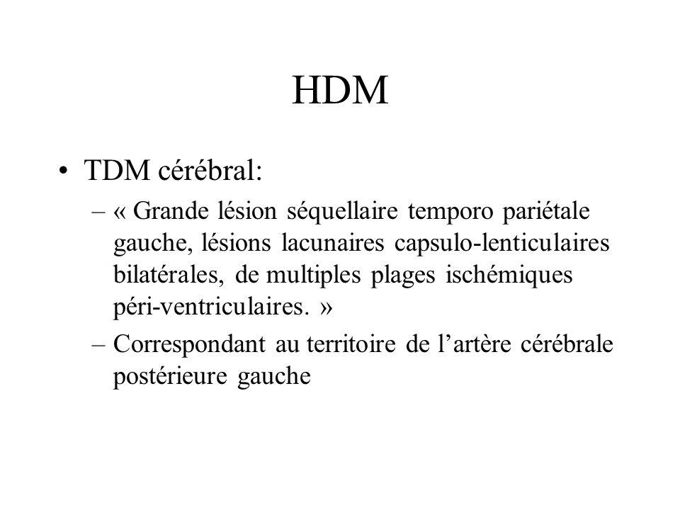 HDM TDM cérébral: