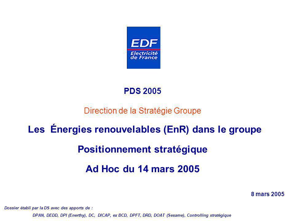 PDS 2005 Direction de la Stratégie Groupe Les Énergies renouvelables (EnR) dans le groupe Positionnement stratégique Ad Hoc du 14 mars 2005