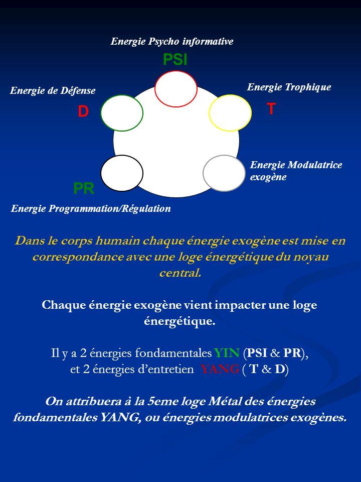 Chaque énergie exogène vient impacter une loge énergétique.