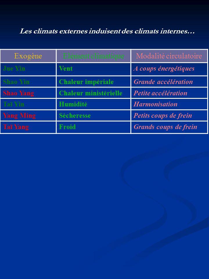 Modalité circulatoire