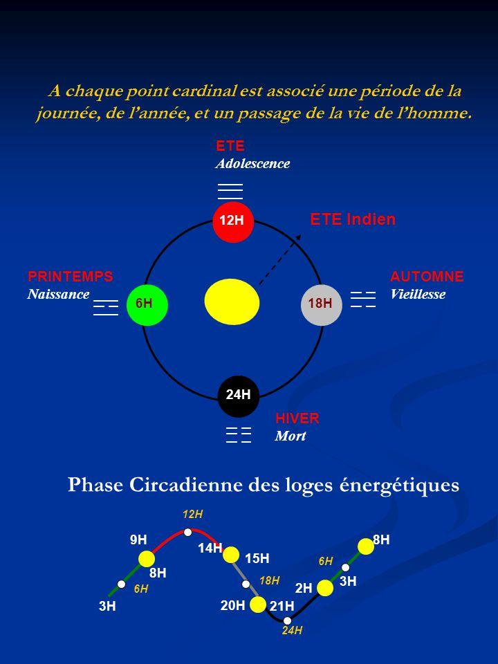Phase Circadienne des loges énergétiques