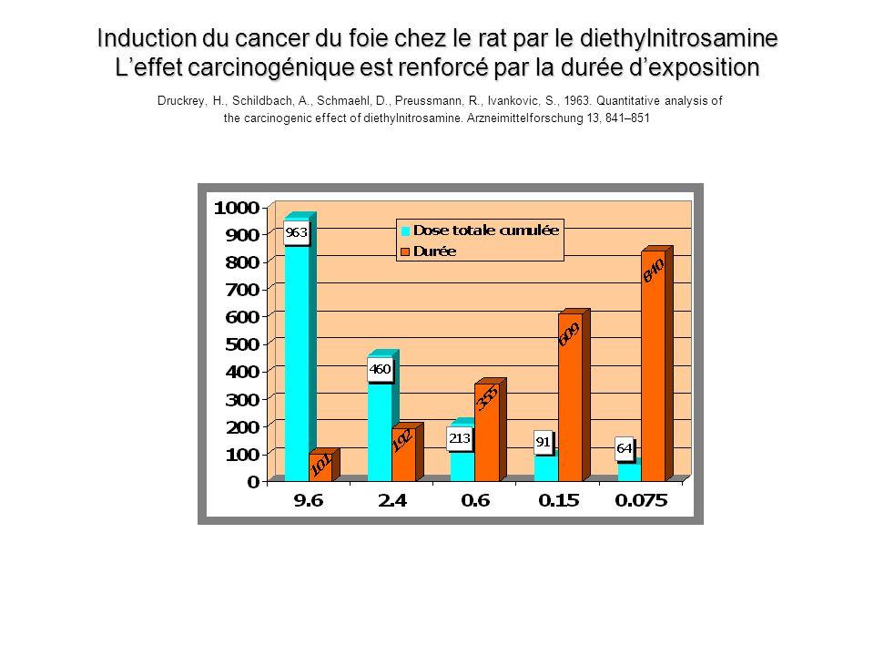 Induction du cancer du foie chez le rat par le diethylnitrosamine L'effet carcinogénique est renforcé par la durée d'exposition Druckrey, H., Schildbach, A., Schmaehl, D., Preussmann, R., Ivankovic, S., 1963.