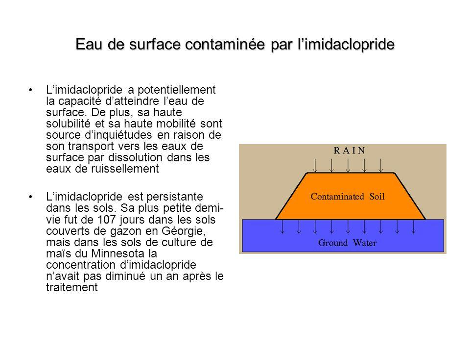 Eau de surface contaminée par l'imidaclopride
