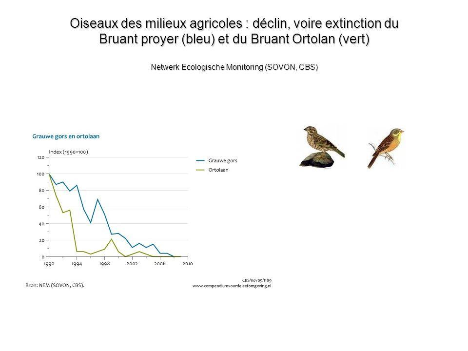 Oiseaux des milieux agricoles : déclin, voire extinction du Bruant proyer (bleu) et du Bruant Ortolan (vert) Netwerk Ecologische Monitoring (SOVON, CBS)