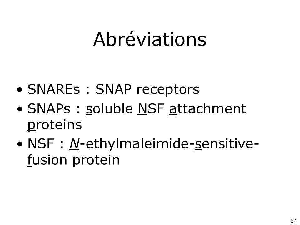 Abréviations SNAREs : SNAP receptors
