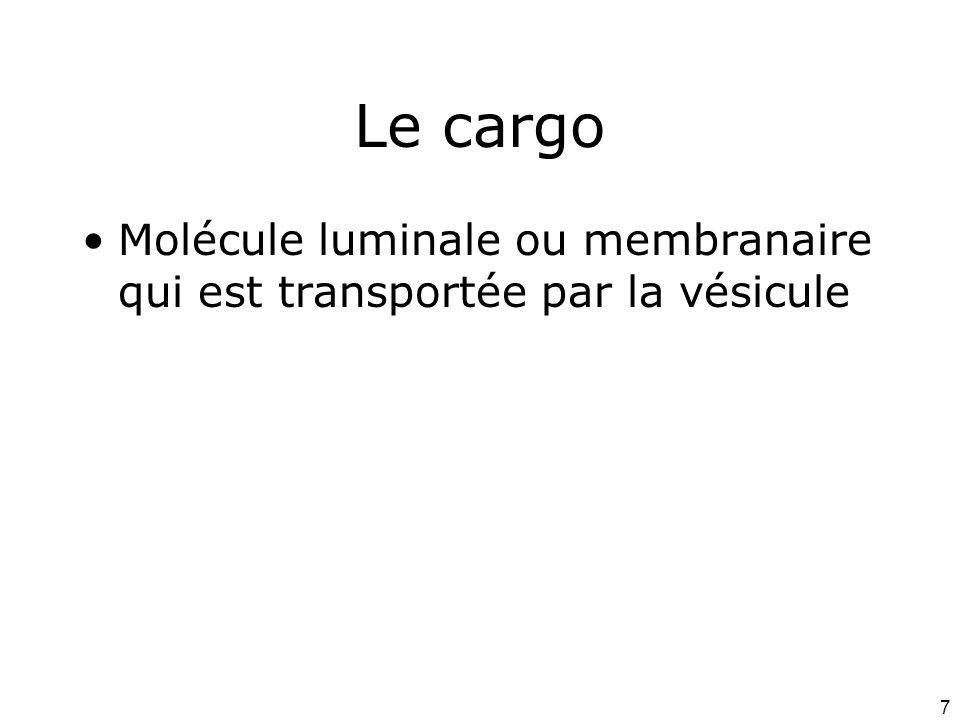Le cargo Molécule luminale ou membranaire qui est transportée par la vésicule